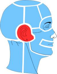 Упражнения при болях в области уха и височно-нижнечелюстного сустава