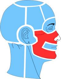 Упражнения при болях в области щеки и полости рта