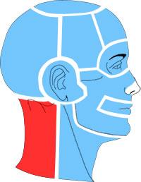 Упражнения при болях в области задней поверхности шеи