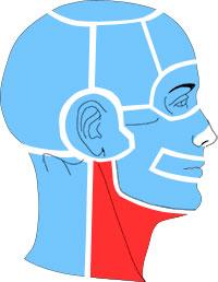 Упражнения при болях в области передней поверхности шеи