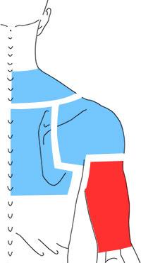 Упражнения при болях по задней поверхности верхней конечности
