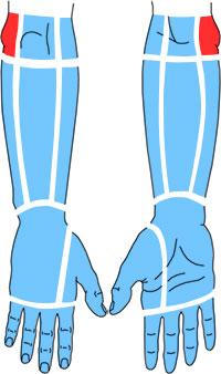 Упражнения при болях в области медиального надмыщелка плечевой кости