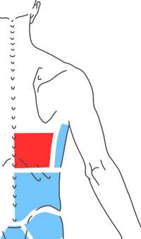 Упражнения при болях в нижнегрудной части спины