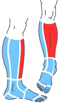 Упражнения при болях по передней поверхности голени