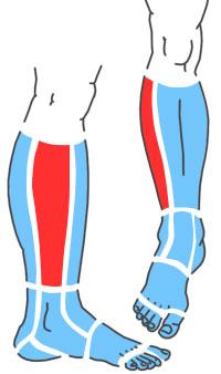 Упражнения при болях по наружной стороне голени