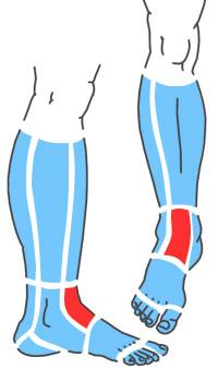 Упражнения при болях по передней поверхности лодыжки