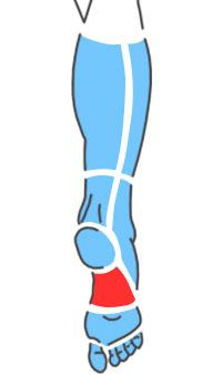 Упражнения при болях по подошвенной стороне среднего отдела стопы