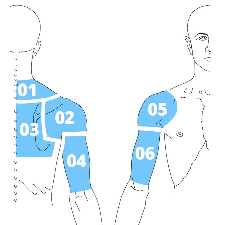 Карта боли верхней части спины, плечевого пояса и верхних конечностей