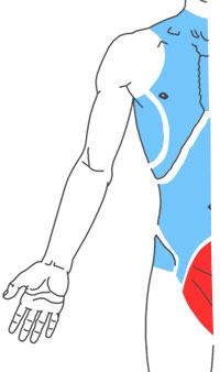 Упражнения при болях в области таза